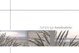 Cover-Bild zu DK Trauer 81-1338