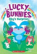 Cover-Bild zu Sky's Surprise (Lucky Bunnies #1), Volume 1 von Coe, Catherine