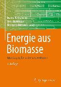 Cover-Bild zu Energie aus Biomasse (eBook) von Kaltschmitt, Martin (Hrsg.)