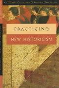 Cover-Bild zu Gallagher, Catherine: Practicing New Historicism