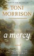Cover-Bild zu Morrison, Toni: A Mercy