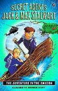 Cover-Bild zu Hunt, Elizabeth Singer: Secret Agents Jack and Max Stalwart (eBook)