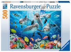 Cover-Bild zu Delfine im Korallenriff