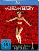 Cover-Bild zu American Beauty von Ball, Alan