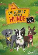 Cover-Bild zu Die Schule für kleine Hunde - Polly, Pip und Nelly von Lewis, Gill