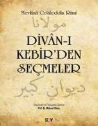 Cover-Bild zu Divan-i Kebirden Secmeler von Celaleddin-i Rûmi, Mevlana