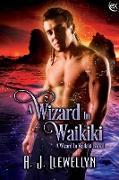 Cover-Bild zu A Wizard in Waikiki (eBook) von Llewellyn, A. J.