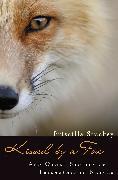 Cover-Bild zu Kissed by a Fox (eBook) von Stuckey, Priscilla