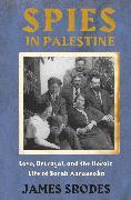Cover-Bild zu Spies in Palestine (eBook) von Srodes, James