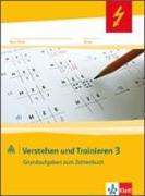 Cover-Bild zu Mathe 2000. Verstehen und Trainieren. Schülerarbeitsheft 3. Schuljahr