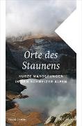 Cover-Bild zu Coulin, David: Orte des Staunens