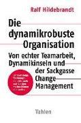 Cover-Bild zu Die dynamikrobuste Organisation von Hildebrandt, Ralf