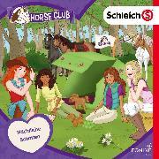 Cover-Bild zu Landa, Leonie (Gelesen): Folge 16: Nächtliche Schatten (Audio Download)