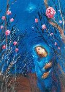 Cover-Bild zu Maria durch ein Dornwald ging von Köder, Sieger (Illustr.)