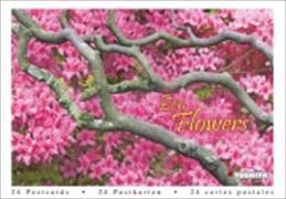 Cover-Bild zu Zen Flowers