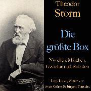 Cover-Bild zu Theodor Storm: Die größte Box (Audio Download) von Storm, Theodor