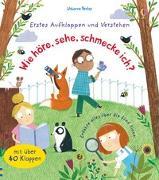 Cover-Bild zu Daynes, Katie: Erstes Aufklappen und Verstehen: Wie höre, sehe, schmecke ich?