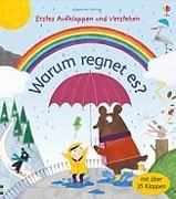 Cover-Bild zu Daynes, Katie: Erstes Aufklappen und Verstehen: Warum regnet es?