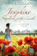 Cover-Bild zu Gulland, Sandra: Joséphine - Napoléons große Liebe