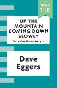Cover-Bild zu Up the Mountain Coming Down Slowly (eBook) von Eggers, Dave