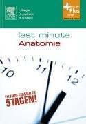 Cover-Bild zu Last Minute Anatomie (eBook) von Rengier, Fabian