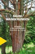 Cover-Bild zu Baumwanderungen von Roth, Daniel