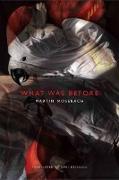 Cover-Bild zu Mosebach, Martin: What was Before