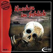 Cover-Bild zu Meteor Horror, Folge 7: Knochen im Schlick (Audio Download) von Gutzeit, Sascha