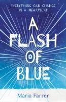 Cover-Bild zu A Flash of Blue von Farrer, Maria