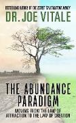 Cover-Bild zu Vitale, Joe: The Abundance Paradigm (eBook)