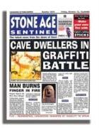 Cover-Bild zu Dowswell, Paul: Stone Age Sentinel