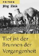 Cover-Bild zu Zink, Jörg: Tief ist der Brunnen der Vergangenheit (eBook)