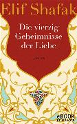 Cover-Bild zu Shafak, Elif: Die vierzig Geheimnisse der Liebe (eBook)