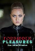 Cover-Bild zu Winslow, Don Julian: Forbidden Pleasures (eBook)