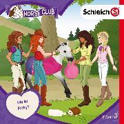 Cover-Bild zu Landa, Leonie (Gelesen): Folge 15: Wo ist Frisky? (Audio Download)