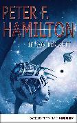 Cover-Bild zu Hamilton, Peter F.: Im Sog der Zeit (eBook)