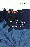 Cover-Bild zu Johann Wolfgang von Goethe: Die Leiden des jungen Werthers von Madsen, Rainer