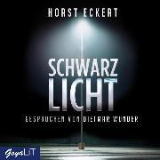 Cover-Bild zu Schwarzlicht (Audio Download) von Eckert, Horst