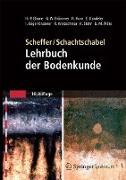 Cover-Bild zu Scheffer/Schachtschabel: Lehrbuch der Bodenkunde (eBook) von Blume, Hans-Peter
