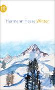 Cover-Bild zu Winter von Hesse, Hermann