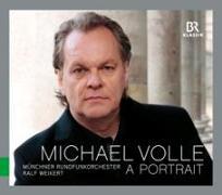 Cover-Bild zu Ein Portrait von Volle, Michael