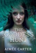 Cover-Bild zu Goddess Hunt (eBook) von Carter, Aimee