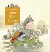 Cover-Bild zu After the Storm von Butterworth, Nick