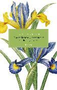 Cover-Bild zu Die schöne Cassandra. Sämtliche Jugendwerke (eBook) von Austen, Jane