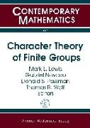 Cover-Bild zu Character Theory of Finite Groups von Lewis, Mark L. (Hrsg.)