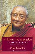Cover-Bild zu The Heart of Compassion (eBook) von Khyentse, Dilgo