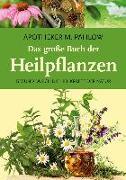 Cover-Bild zu Das große Buch der Heilpflanzen von Pahlow, Mannfried