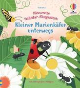 Cover-Bild zu Mein erstes Entdecker-Klappenbuch: Kleiner Marienkäfer unterwegs von Milbourne, Anna