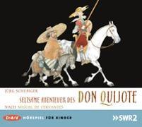 Cover-Bild zu Seltsame Abenteuer des Don Quijote von Schubiger, Jürg
