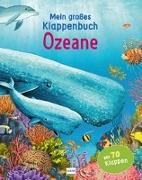 Cover-Bild zu Mein großes Klappenbuch - Ozeane von Ganeri, Anita